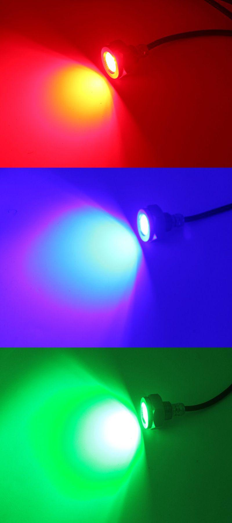 wp-1020-colores