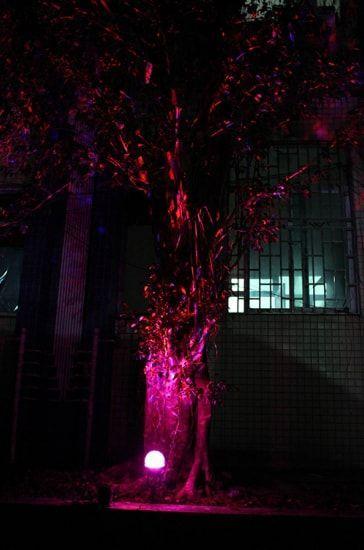 Luces de Jardín y exteriores
